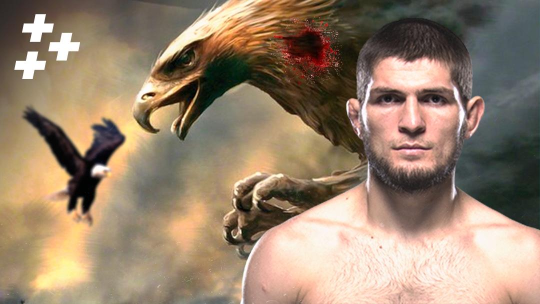 Как Хабиб обманывает UFC. Что останется после ухода Нурмагомедова