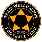 Тим Веллингтон