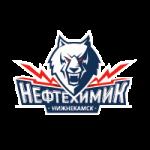 Нефтехимик Нижнекамск