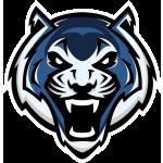 Синие тигры