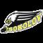 ХК Баник Соколов