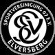 Эльфсберг