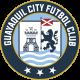 Гуаякиль Сити